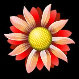 Наша доставка цветов показывает, какие композиции создают наши флористы